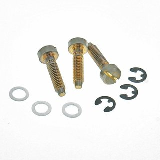 SS-GA (3pcs.) 	Faber® Saddles Replacement screw, Brass, gold plated, aged
